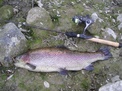 Pesca Alla Trota Pesca Alla Trota